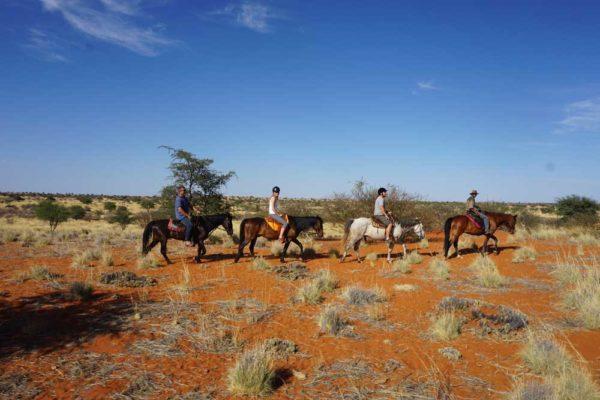 Soft adventure tours horse trails