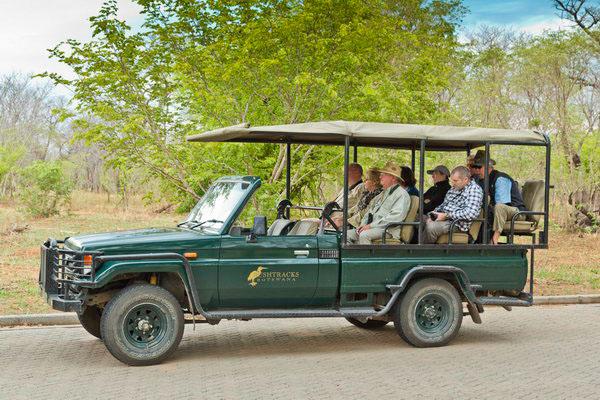 Game drive Botswana